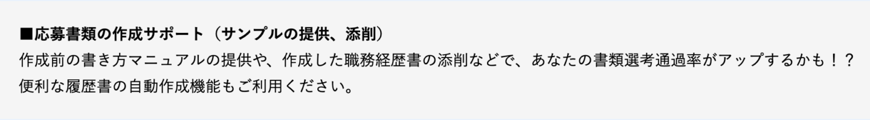 MS-Japan 応募書類添削